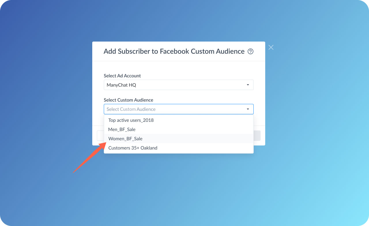 Choose the custom audience you'd like to add subscribers to