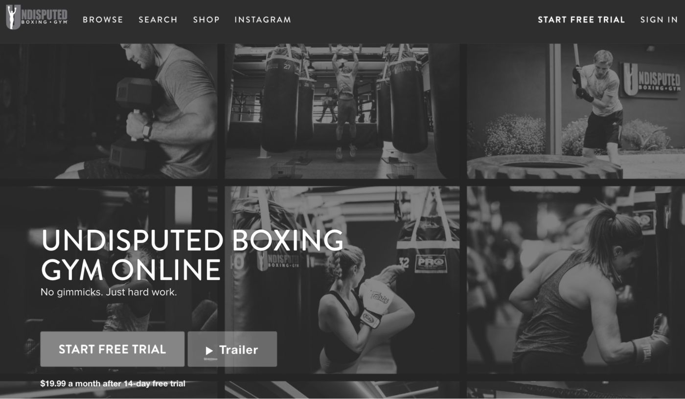 Online Marketing Strategies for Gyms - Undisputed Boxing Gym Online